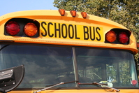 U.S. Regulators Recommend Seat Belts for School Buses