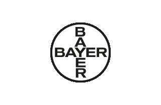 2000/bayer
