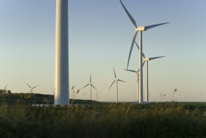Some 11% of the India's total power capacity comes from renewable energy. (Photo: M. Van Braak)