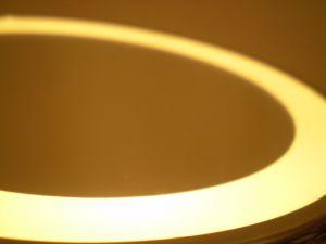 Shaky Kodak Moment as Bankruptcy Fears Stir