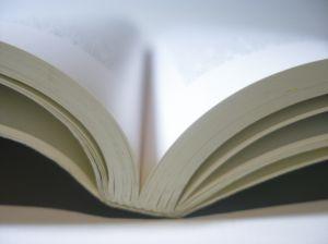Digital Publishing Shines at BookExpo America